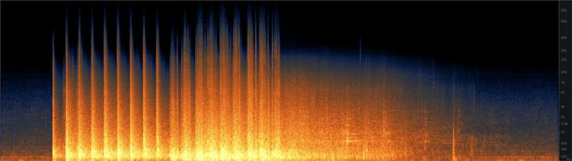 Hospital Implosion Spectrogram